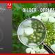 10_Sissels Grafiske Bilder Opploesning FeatImg-1200x675