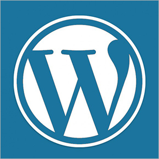 Sissels Grafiske WordPress 02